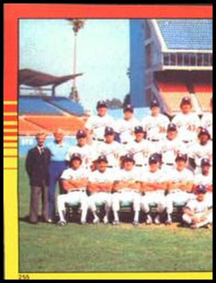 255 Dodgers Team World Champions (Left half photo)