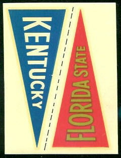 5 Florida State Pennant
