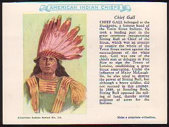 14 Chief Gall