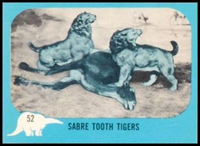 52 Sabre Tooth Tigers